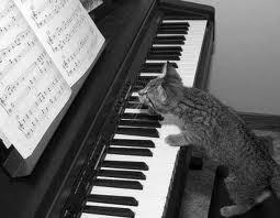 не стреляйте в пианиста