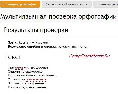 результат проверки текста на сайте advego ru