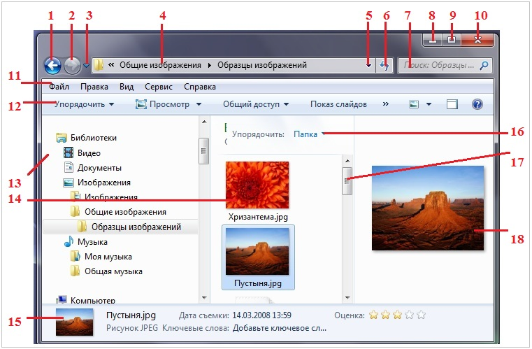 Окно папки Windows 7
