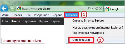 Версия браузера IE