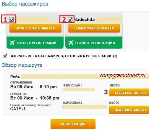 Регистрация билетов на самолет онлайн россия билеты на самолет на сочи
