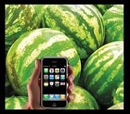 определить спелость арбуза программа для смартфона
