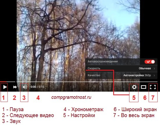 просмотр роликов youtube