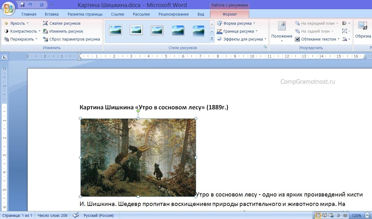 Вид вставленной картинки после вставки в текст