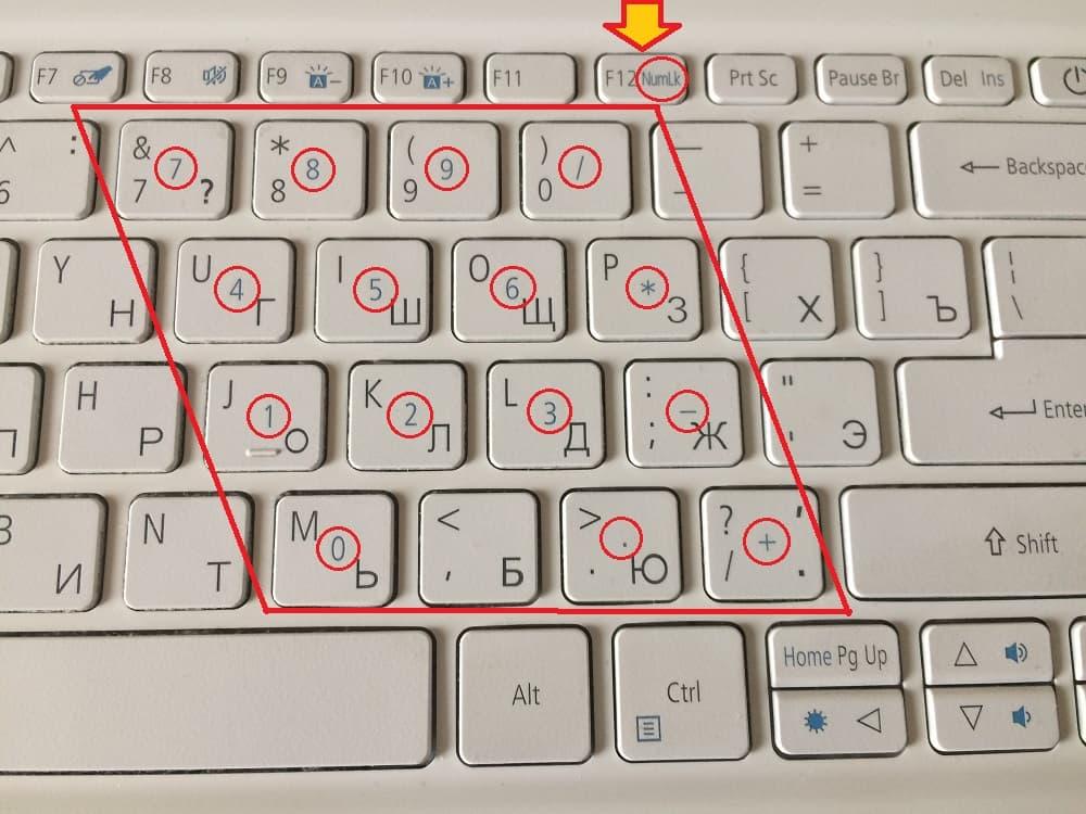значки клавиш малой цифровой клавиатуры на ноутбуке выделены цветом