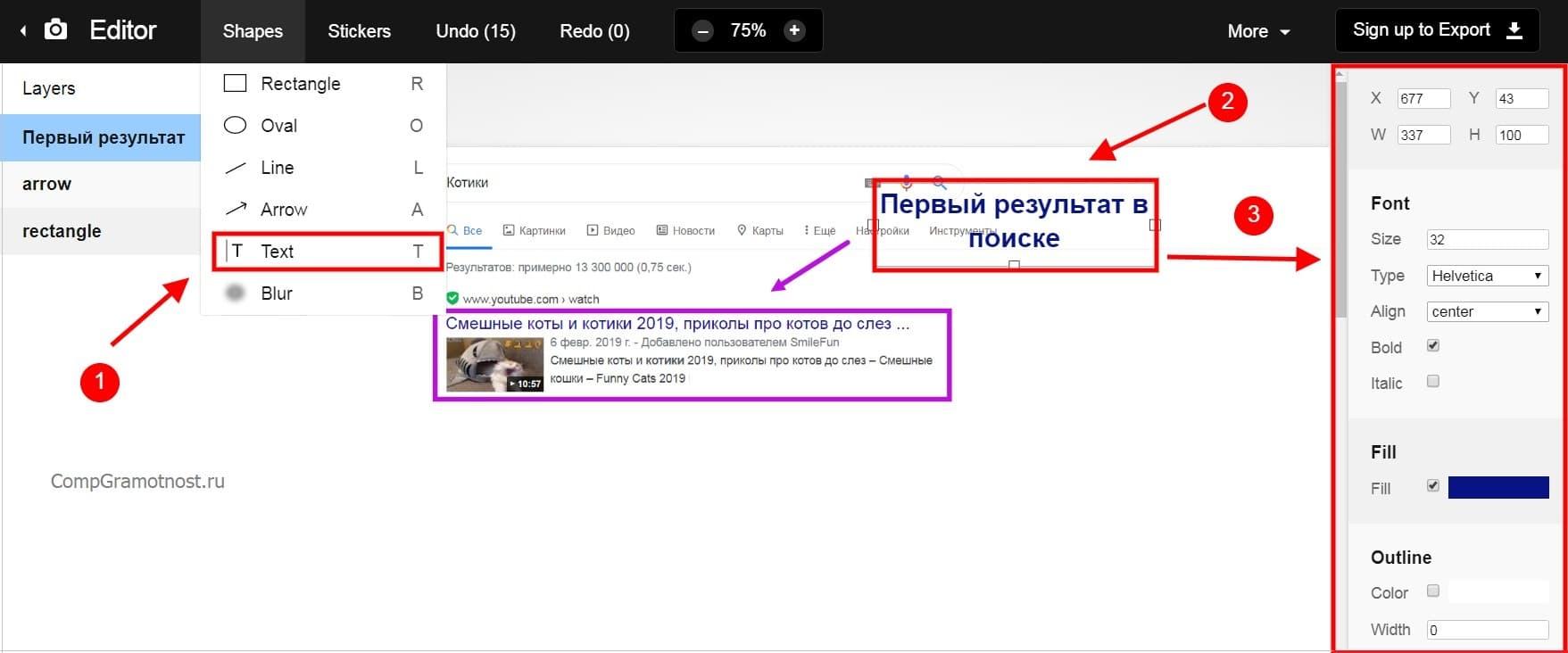Функция текст позволяет набрать поясняющий текст к скриншоту