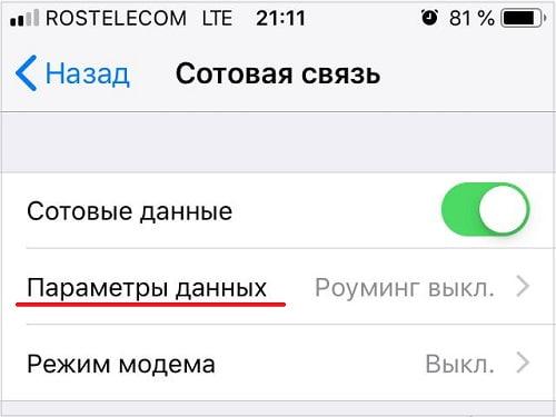 Параметры данных в айфоне